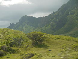 Filming Locations for Lost and Jurassic Park , Chloejay - October 2011