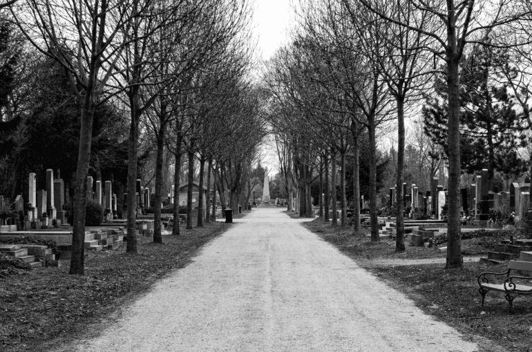 Zentralfriedhof / Central cemetry - Vienna