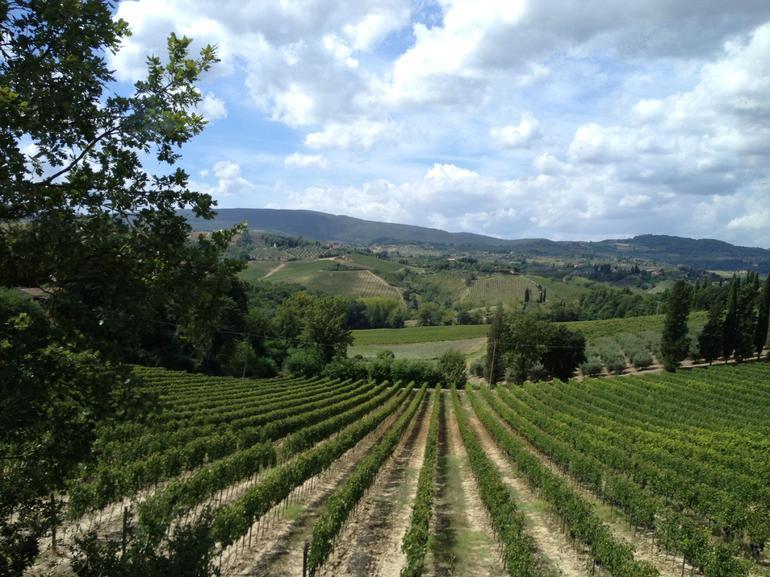 Farm near San Giminano - Florence