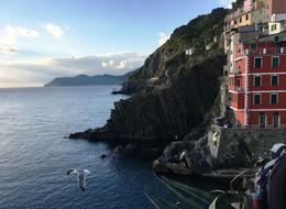 The beautiful Cinque Terre coastline! , nathan - February 2017