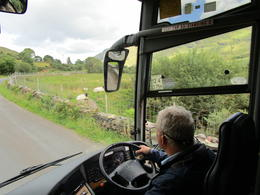 Our bus driver Michael and some lovely sheep , Carol L - August 2017