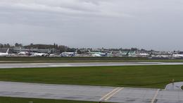 FLIGHT LINE , FLASH - November 2014