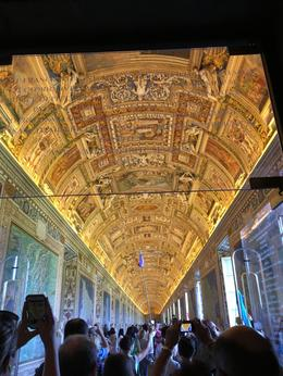 The ceilings in the Vatican were amazingly decorated , Julia E - August 2016