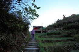 Steps up Longji Rice Terraces - May 2012