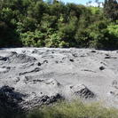 Rotorua Full Day Tour: Waitomo Caves, Agrodome and Te Puia departs Auckland, Auckland, New Zealand