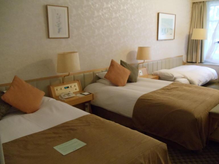 Prince Hakone Annex hotel room - Tokyo