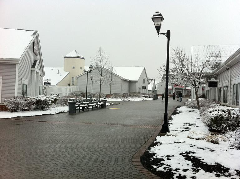 Snowing in Woodbury - New York City