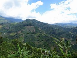 Gorgeous view from the coffee farm! , Jess - August 2015