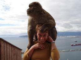 That's me in Gibraltar with my new friend. , Carol S - January 2011