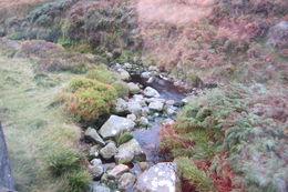 Un cours d'eau , ROLAND H - October 2015
