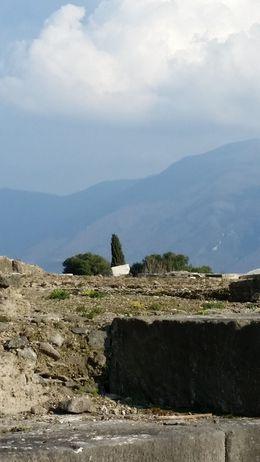 Pompeii , Marie D - March 2015