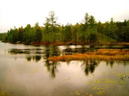 reflections , munni - October 2012