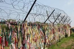Razor wire fence , Daniel B - August 2016