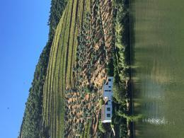 A winery along the river, near Pinhâo. , Patrice d - October 2016