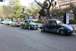 Beetles driving through La Paz, Bandit - July 2014