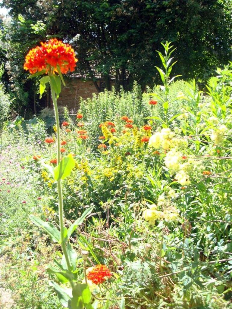 Gardens - London