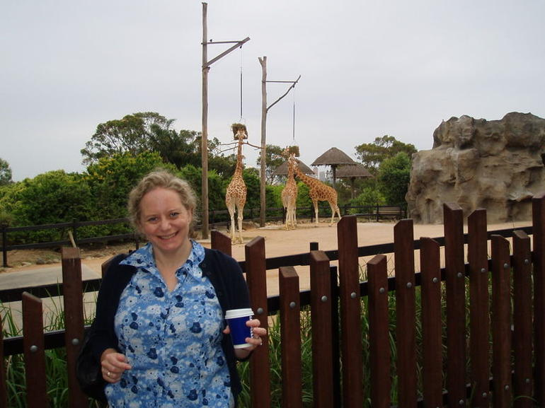 with Giraffes - Sydney