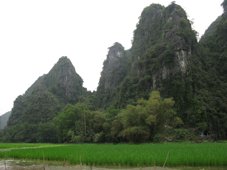Hoa Lu Tam Coc Full-Day DELUXE Tour Including BUFFET LUNCH & River Boat Ride photo 45