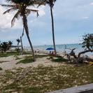 Pase de un día para Paradise Cove o solo esnórquel con transporte desde Freeport, Freeport, BAHAMAS