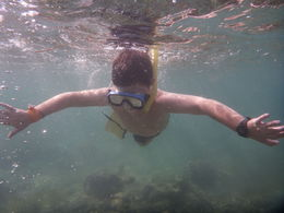 This is my 7 year old son. He was so excited to go to the barrier reef and snorkel. , Alistair C - June 2015