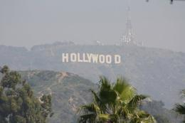 Looking up at the Hollywood hills - April 2010
