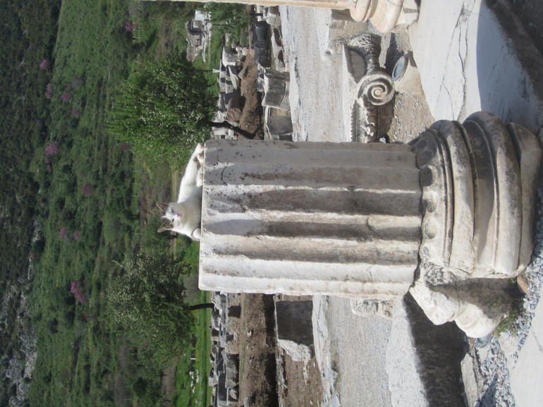 IMG_1221 - Izmir