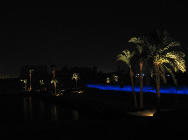 Palm trees at Karnat - Luxor