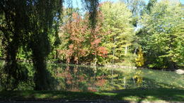 Centeral Park in the Fall , shaun c - November 2016
