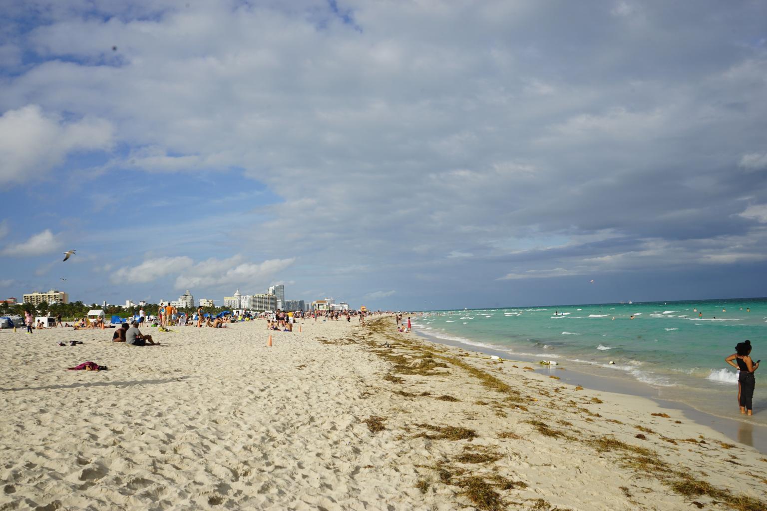 MÁS FOTOS, Everglades and Miami Adventure from Orlando