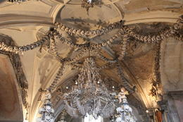 the Chandelier made of different types of human bones , Ellen - April 2012
