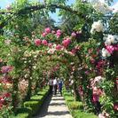 Butchart Gardens Tour from Victoria, Isla de Vancouver, CANADA