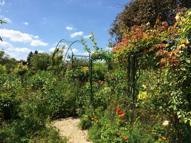 Giverny and Monet's Garden Small Group Day Trip from Paris photo 19
