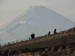 View of Mt Fuji after taken the ropeway ride , easy789 - January 2015