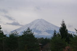 the view of Mt. Fuji at the visitor's center , Mrs. Ty - December 2011