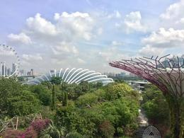 Gardens by the Bay , Eike K - November 2017