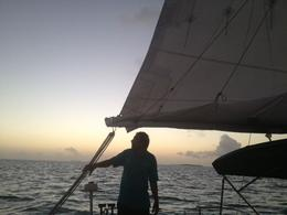 Our wonderful captain Matt, expertly sailing our boat during the Champagne Sunset Cruise , Sherree T - February 2014