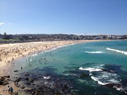 Bondi Beach, Cat - March 2013