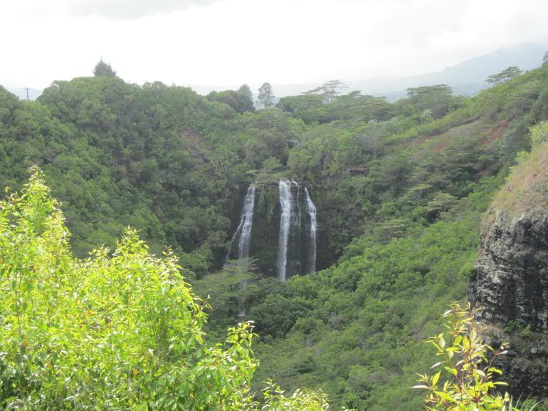 IMG_4977 - Oahu