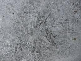 More cool ice patterns., Kelly G - February 2010