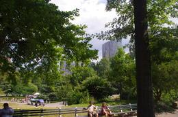 Petite promenade à Central Park , CAROLE M - August 2014