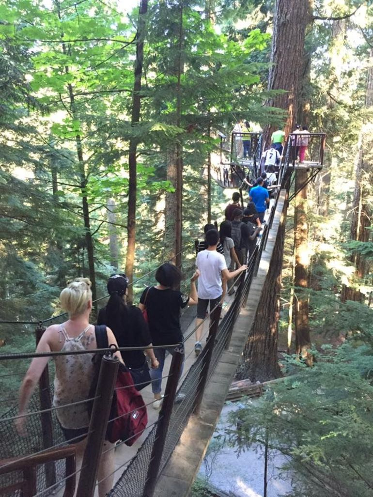 Pre or Post-Cruise Shore Excursion: Capilano Suspension Bridge & Grouse Mountain