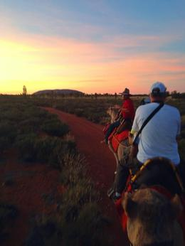Uluru Camel Tour at Sunrise , cherrry.ripe - April 2014