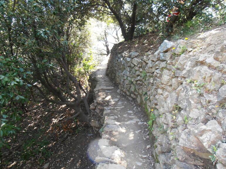 Along the hike - Florence