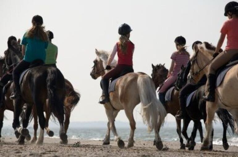 Beach Horseback Riding - Montego Bay