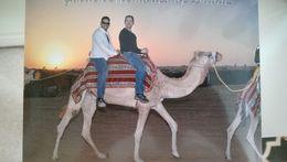 Polo and Michael Dubai 2016 , Enos R - February 2016