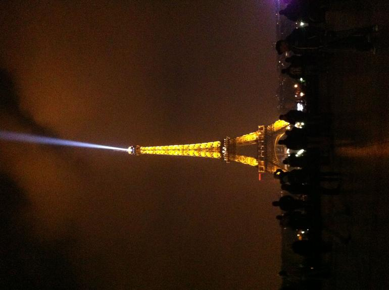 eifel toren by night tijdens boottrip - Paris