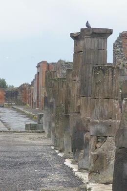 Pompeii , Wesly W - May 2011