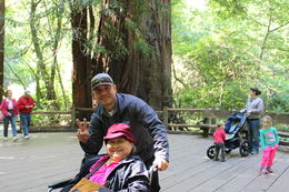 This is Randy our bus driver and tour guide who got a wheelchair for my cousin Minda and took her inside Muir woods , Terri - July 2016