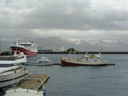 Reykjavík Harbour, Irene - June 2015