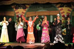 Flamenco Show with Tapas , Christine P - October 2013
